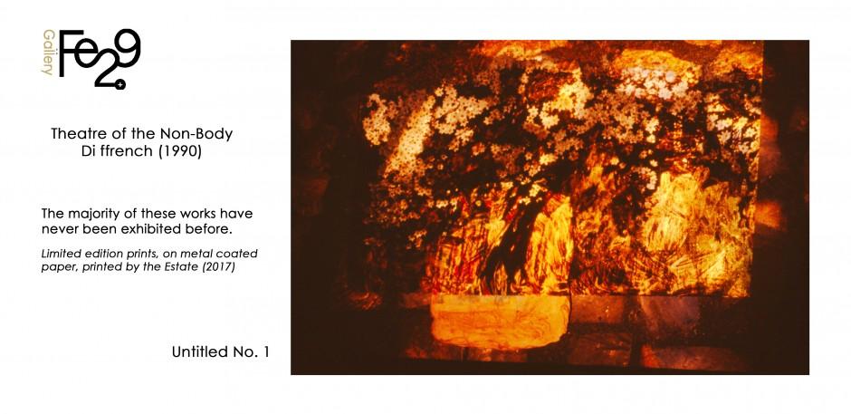170922 - Untitled No 1 - Dark Clematis